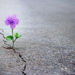 Come gestire lo stress: scopriamo cos'è la resilienza