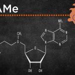 Storia, curiosità e benefici della molecola SAMe, l'alleata del benessere psico-fisico.